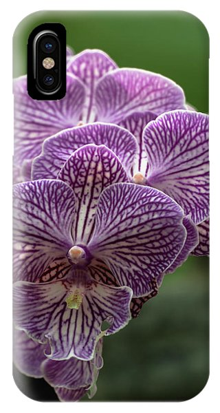 IPhone Case featuring the photograph Phalaenopsis Orchid by Cristina Stefan