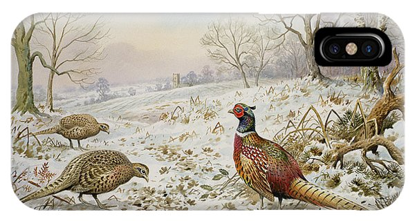 Pheasant And Partridges In A Snowy Landscape IPhone Case