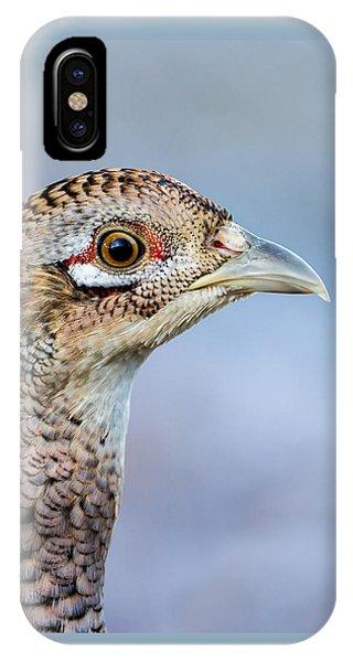 Pheasant Hen IPhone Case