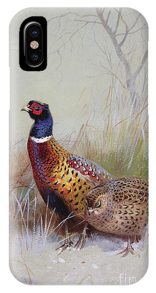 Shooting iPhone Case - Pheasants In The Snow by Archibald Thorburn