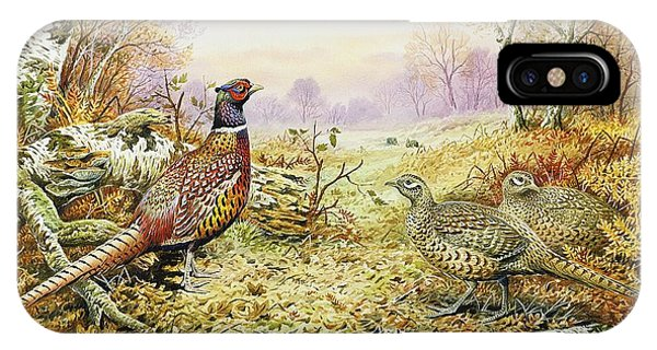 Fowl iPhone Case - Pheasants In Woodland by Carl Donner
