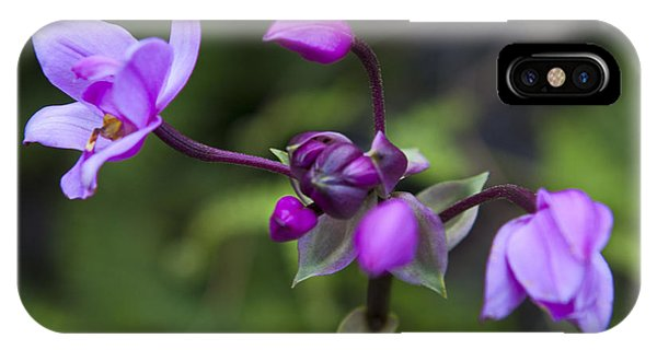 Philippine Ground Orchid IPhone Case