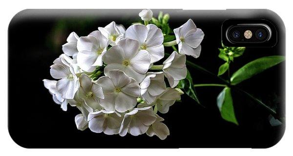 iPhone Case - Phlox Flowers by Bill Linn