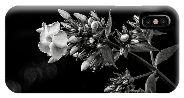iPhone Case - Phlox In Black And White by Bill Linn