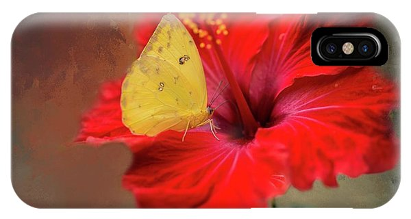 Phoebis Philea On A Hibiscus IPhone Case