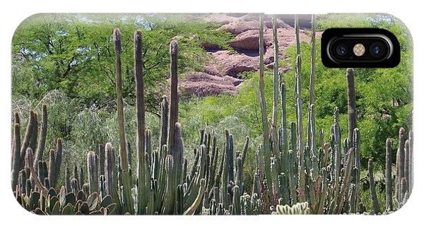 Phoenix Botanical Garden IPhone Case