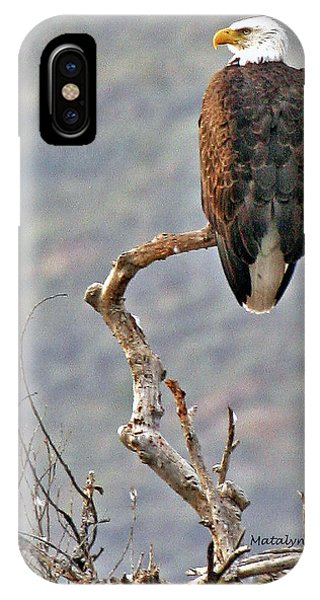Phoenix Eagle IPhone Case