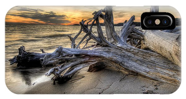 Pic Driftwood IPhone Case