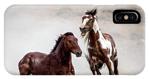 Picasso - Wild Stallion Battle IPhone Case