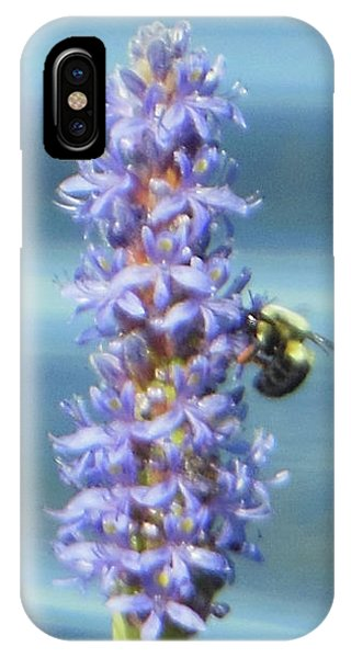 Pickerelweed Bumble Bee IPhone Case