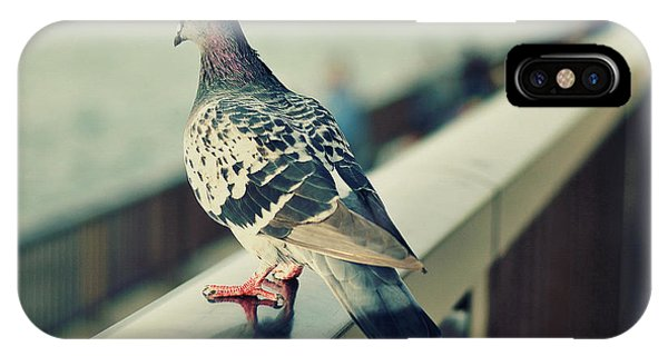 Pigeon iPhone Case - Pigeon by Emma Brown