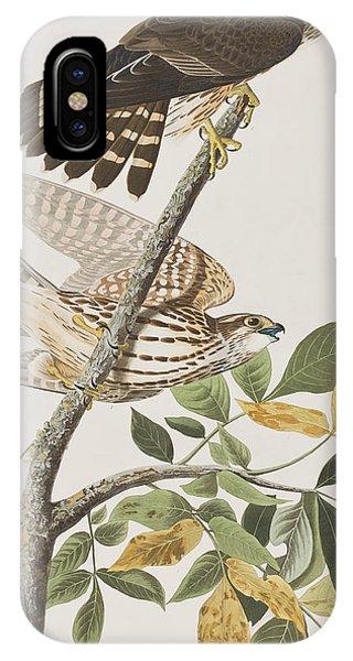 Pigeon Hawk IPhone Case
