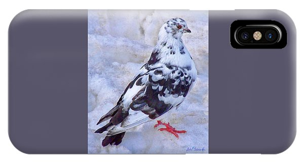 Pigeon On Ice  1 IPhone Case