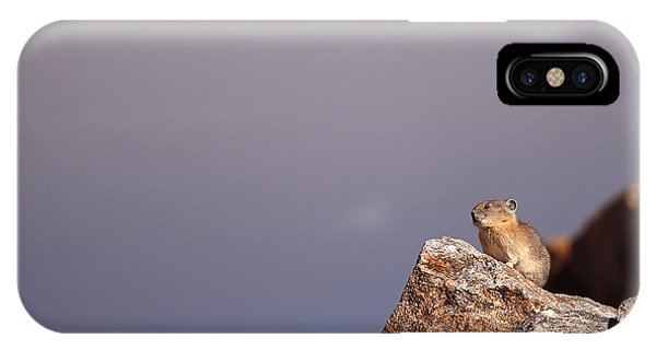 Pika Perched High Among Stormy Skies IPhone Case