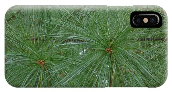 Pine Needles IPhone Case