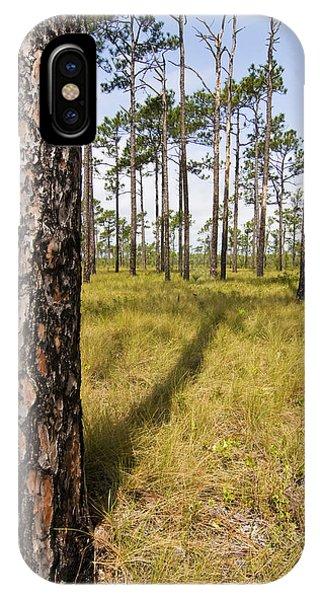 Pine Savanna II IPhone Case