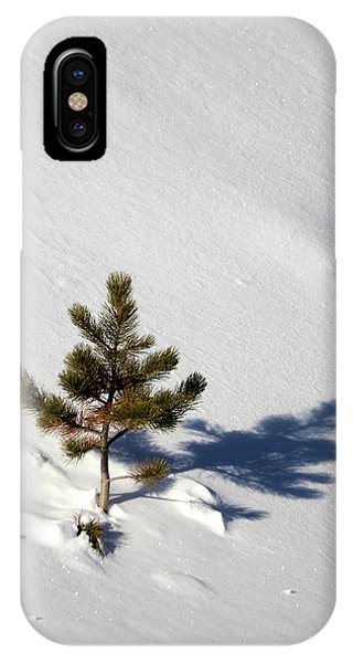 IPhone Case featuring the photograph Pine Shadow by Shane Bechler