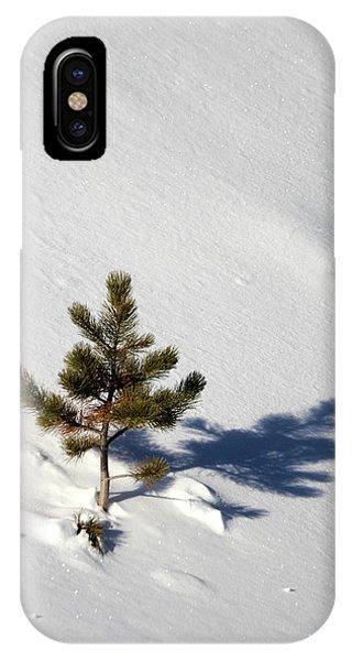 Pine Shadow IPhone Case