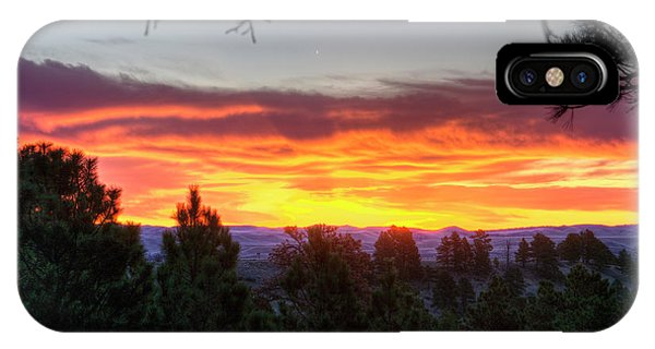 Pine Sunrise IPhone Case