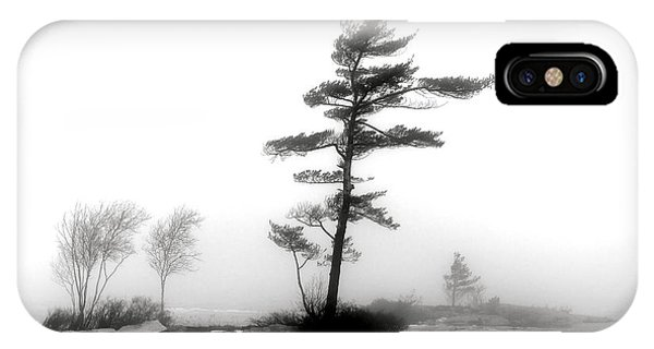 Shrouds iPhone Case - Pine Tree In Winter Fog by Olivier Le Queinec