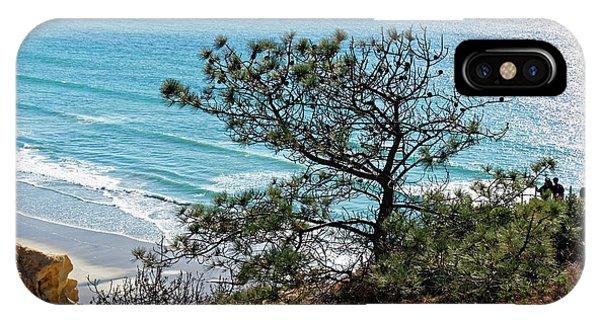 Pine Tree On Coast IPhone Case