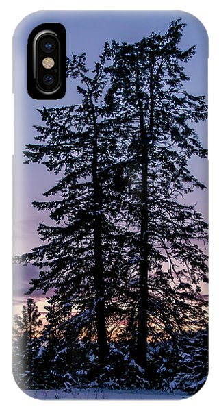 Pine Tree Silhouette    IPhone Case