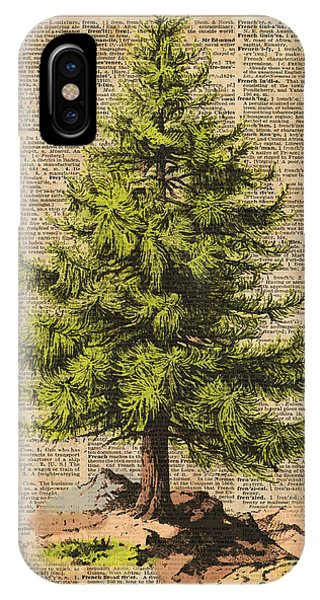 Christmas Tree iPhone Case - Pine Tree,cedar Tree,forest,nature Dictionary Art,christmas Tree by Anna W