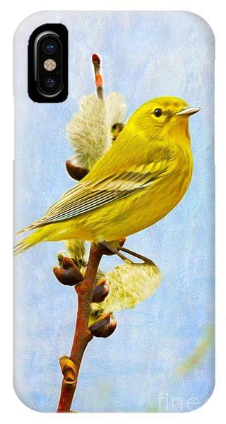 Pine Warbler On Willow Catkin IPhone Case