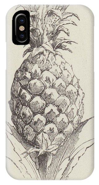 Organic iPhone Case -   Pineapple by English School
