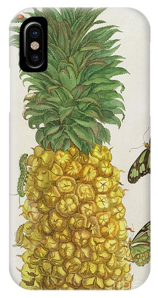 Organic iPhone Case - Pineapple With Caterpillar And Butterflies by Pieter Sluyter