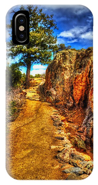 Ponderosa Pine Guarding The Trail IPhone Case