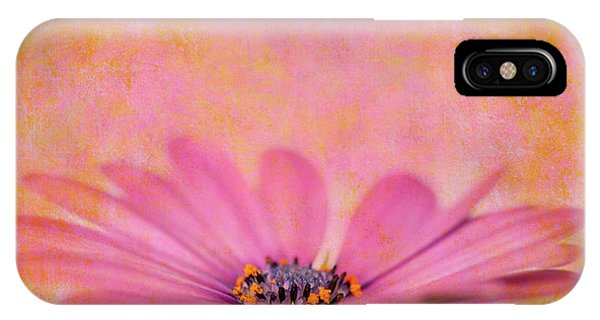 Pollination iPhone Case - Pink African Daisy by Delphimages Photo Creations