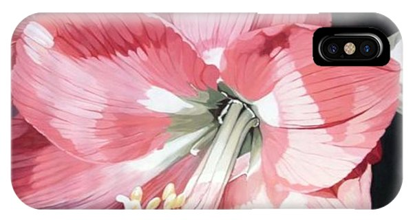 Pink Amaryllis IPhone Case