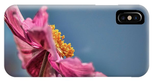 IPhone Case featuring the photograph Pink And Yellow Profile #h8 by Leif Sohlman