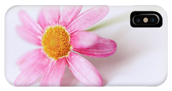 IPhone Case featuring the photograph Pink Aster Flower II by Nick Biemans