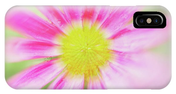 IPhone Case featuring the photograph Pink Aster Flower With Raindrops Abstract by Nick Biemans