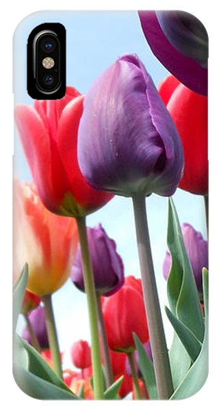 Pink Baby In Tulip Garden IPhone Case