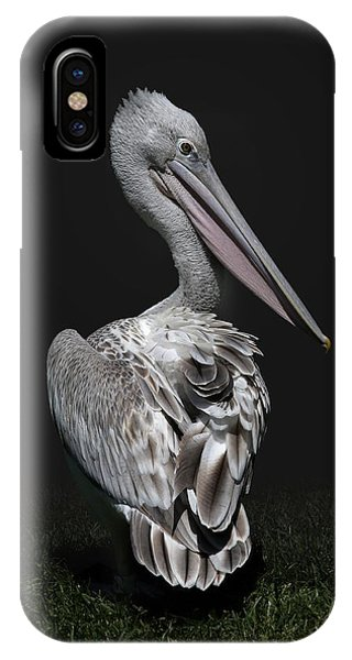 Pink-backed Pelican Rear View IPhone Case