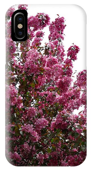 Pink Blossom 2 IPhone Case