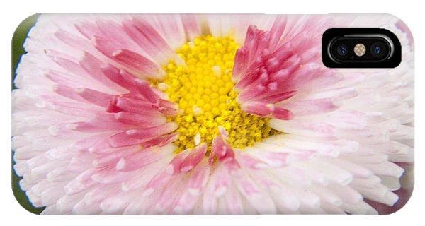 Pink Button Flower IPhone Case