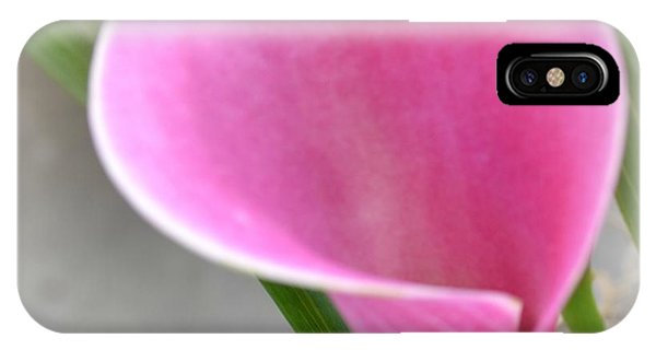 Pink Calla Lily IPhone Case