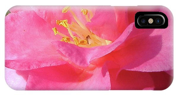 Pink Camelia IPhone Case