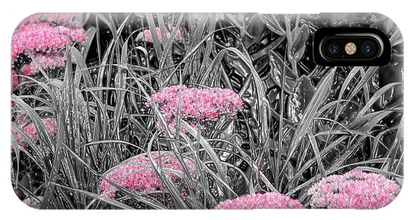 Pink Carved Cowslip IPhone Case