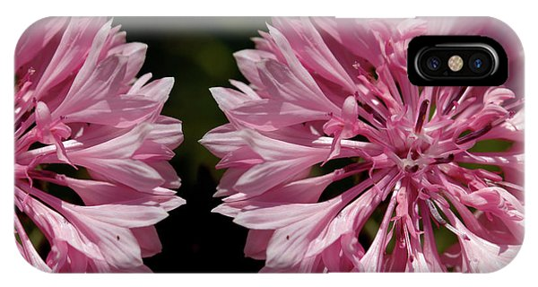 Pink Cornflowers IPhone Case