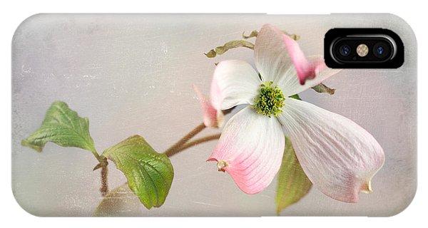 Pink Cornus Kousa Dogwood Blossom IPhone Case