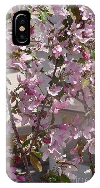 Pink Crabapple Branch IPhone Case