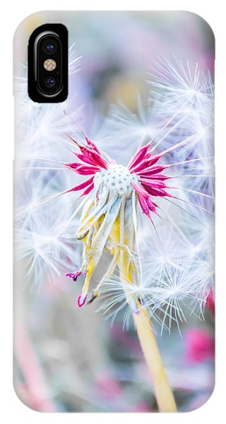 Pink Dandelion IPhone Case