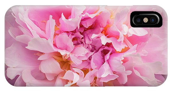 Pink Double Peony IPhone Case
