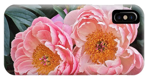 Pink Duo Peony IPhone Case