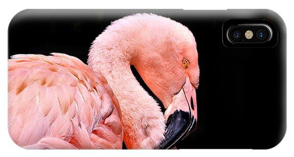 Pink Flamingo On Black IPhone Case